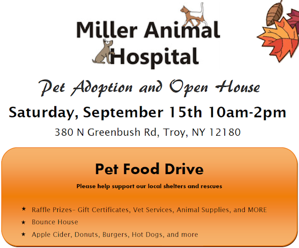 9/15 – Come to Miller Animal Hospital's Pet Adoption Day in Troy, NY!