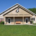 Chathams Small Animal Hospital