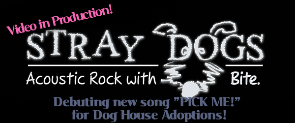 "Stray Dogs ""Pick Me!"""