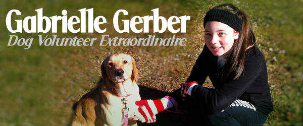 Gabrielle Gerber: A Young Rescue Hero to Dogs in Need