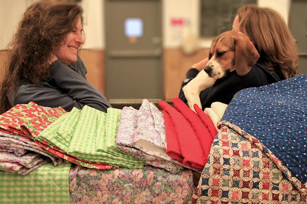 Joan Pasqarelli's Quilts
