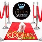 Help Rescue Dogs Win a $10,000 Grant!