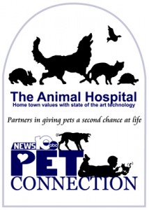 The Animal Hosptial