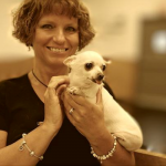Jemma, The Ohio Puppy Mill Chihuahua, Rescued and Healed!