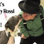 Pit Boss Shorty Rossi Puckers for Pit Bulls in Delmar, NY