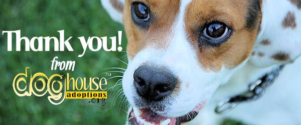 Thank You from Dog House Adoptions