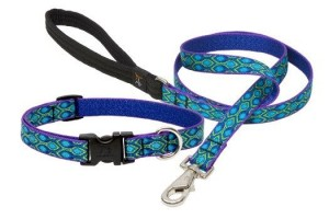 Lupine Collar and Leash