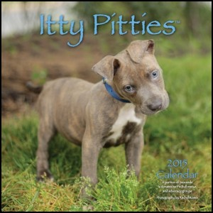 2015 Itty Pitties Calendar